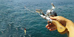 free fishing stuff 2