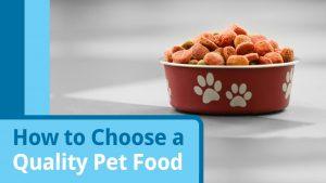 free pet food samples foto 3