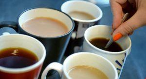 free tea samples foto 2