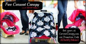 Free Baby Carseat Canopy