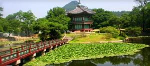 Find Free Stuff in Korea