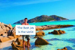 free travel job