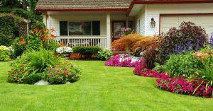 free gardening tips 3