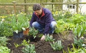 Find Free Gardening Tips