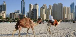Free Govt. Grants UAE