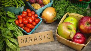 Free Organic Baby Food 6