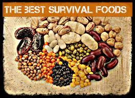 Free Survival Foods 3